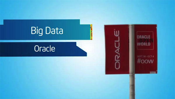 Oracle on Intel for Big Data Systems at OpenWorld 2012