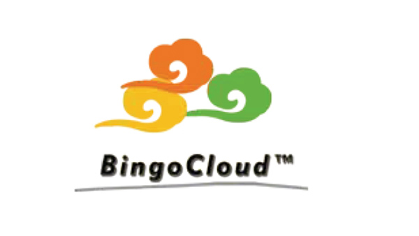 Bingo: Accelerating Rendering Services